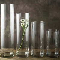 养富贵竹的花瓶 特大号透明玻璃摆件客厅家用插花干花直筒富贵竹百合水培婚庆A