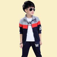 童装男女童秋装卫衣套装长袖运动服两件套韩版中大童男孩帅气外套