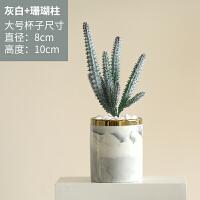 仿真多肉植物装饰ins绿植仙人掌盆栽客厅室内桌面小摆件假花