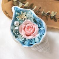永生花diy玫瑰保鲜花礼盒摆件海螺干花花盒生日情人节礼物 海螺的歌声(新款)