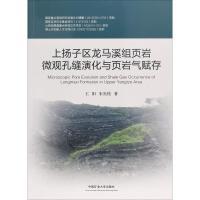 上扬子区龙马溪组页岩微观孔缝演化与页岩气赋存 中国矿业大学出版社