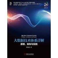 大数据技术体系详解:原理、架构与实践(电子书)