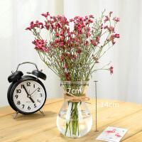 欧式玻璃花瓶水培植物绿萝容器养花透明瓶子水生水养花卉器皿仿真盆景装饰 中等