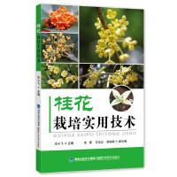 桂花栽培实用技术