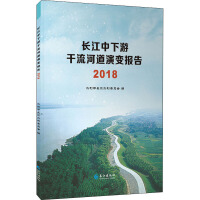 长江中下游干流河道演变报告 2018 长江出版社