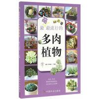 最萌最流行的多肉植物(园艺・家)