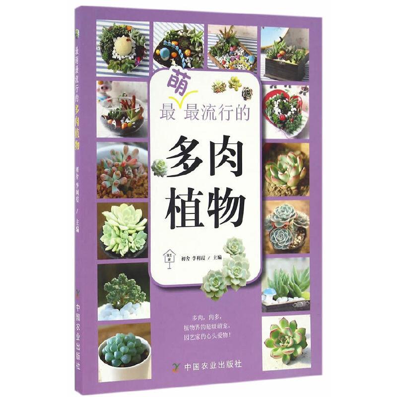 最萌最流行的多肉植物(园艺·家)