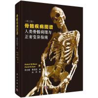 骨骼疾病图谱(人类骨骼病理与正常变异指南第3版)(精) 科学出版社