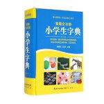 智趣全功能小学生字典(32开本)