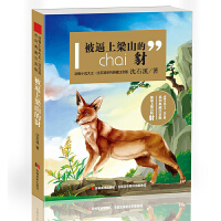 动物小说大王沈石溪系列典藏?注音版-被逼上梁山的豺