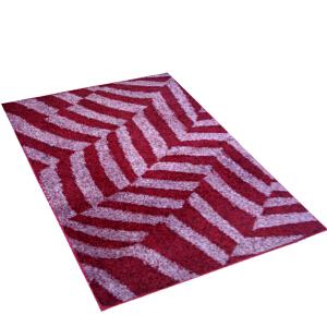 DADA大达时尚客厅卧室大地毯 玄关浴室 防滑地垫 90*110CM 入户门垫脚垫 地毯
