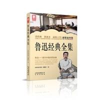 新家庭书架 鲁迅经典全集 《新家庭书架》编委会 9787200101102 北京出版社