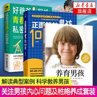 3册套装 养育男孩(典藏版)+正面管教男孩100招+好爸爸写给青春期儿子的私密手册