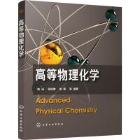 高等物理化学 化学工业出版社
