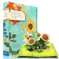 英文原版立体书 Paper Blossoms for All Seasons Pop Up四季纸花 春夏秋冬变化 立体工