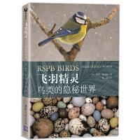 飞羽精灵:鸟类的隐秘世界 鸟类生活的各个方面知识书籍 鸟类科普知识图书籍 清华大学 无 9787200147506