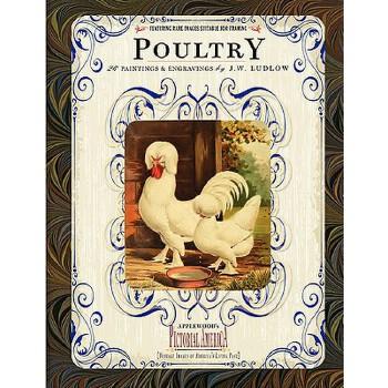 【预订】Poultry: 26 Paintings and Engravings by J. W. Ludlow 预订商品,需要1-3个月发货,非质量问题不接受退换货。