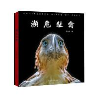 濒危猛禽:保护它们,拯救我们的未来 28种世界濒危猛禽的170多幅珍贵影像