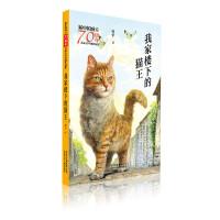 新中国成立70周年儿童文学经典作品集 我家楼下的猫王