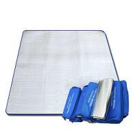 捷�N HY003防潮垫 200CM×200CM 多人加厚加大双面铝膜防潮野餐垫 爬行垫帐