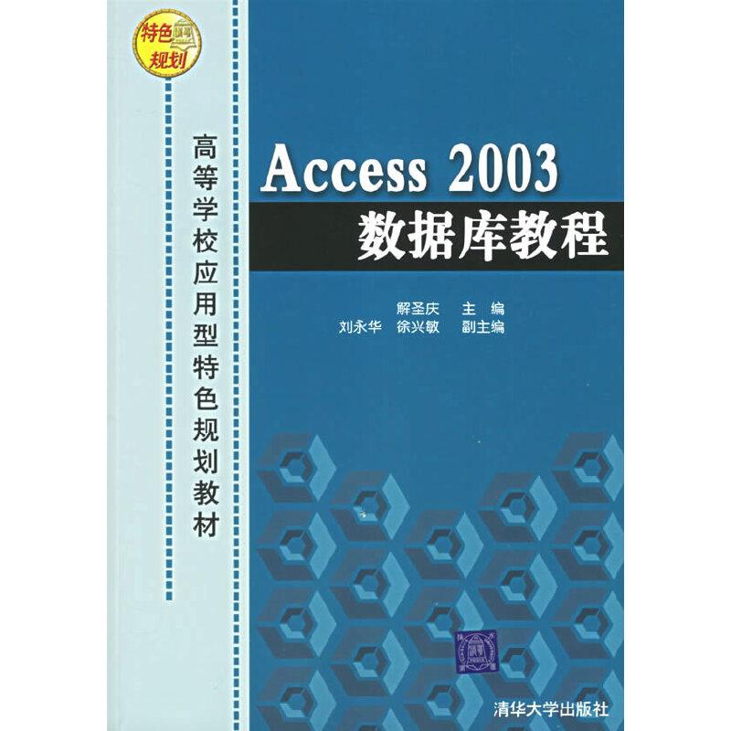 Access 2003数据库教程——高等学校应用型特色规划教材 PDF下载